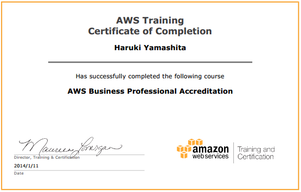 aws-business-professional